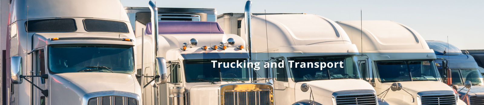 Trucking and Transport